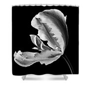 Flower 271 Shower Curtain