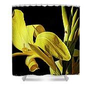 Flower 29f, Ny, 16 Shower Curtain