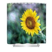 Flower #42 Shower Curtain