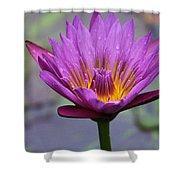 Flower 5 Shower Curtain