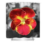Flower 5 - Reverse Black And White Shower Curtain