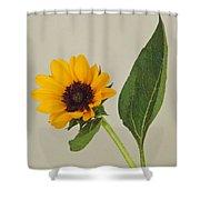 Flower 8-11 Shower Curtain
