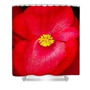 Flower 8 Shower Curtain