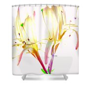 Flower 9315 Shower Curtain