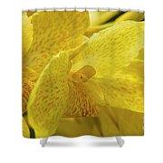 Flower, A Soul Blossoming In Nature Shower Curtain