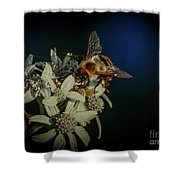 Flower And Bee Shower Curtain