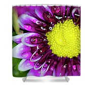 Flower And Droplets Shower Curtain