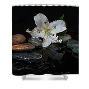 Flower And Stone Shower Curtain