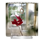 Flower And Window Shower Curtain