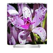 Flower Art - Intimate Orchid 4 - Sharon Cummings Shower Curtain