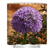 Flower At Chelsea Shower Curtain