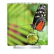 Flower Balance Shower Curtain