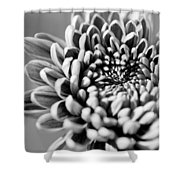 Flower Black And White Shower Curtain