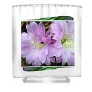 Flower Blossom Pink Shower Curtain