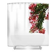 Flower Branch Shower Curtain