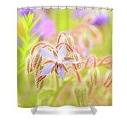Flower Carpet Shower Curtain