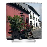 Flower Cart Old Antigua Shower Curtain