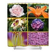 Flower Collage 1 Shower Curtain