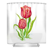 Flower Collection2 Shower Curtain