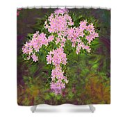 Flower Cross Fancy Shower Curtain