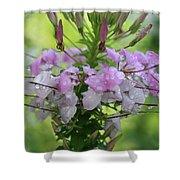 Flower Dew Beauty Shower Curtain