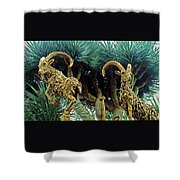 Flower Dome 28 Shower Curtain