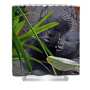Flower Dome 37 Shower Curtain