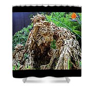 Flower Dome 41 Shower Curtain