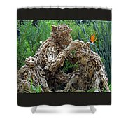 Flower Dome 42 Shower Curtain
