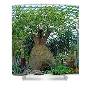 Flower Dome 6 Shower Curtain