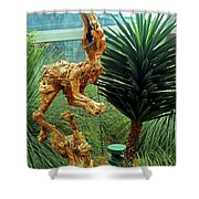 Flower Dome 8 Shower Curtain