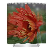 Flower Dreams Shower Curtain