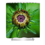 Flower Eye Shower Curtain