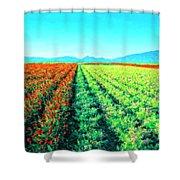 Flower Farm 1 Shower Curtain