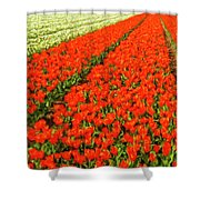 Flower Farm 2 Shower Curtain