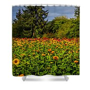 Flower Farm Shower Curtain