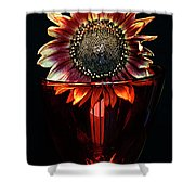 Flower For Foodie #3. Shower Curtain