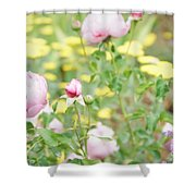 Flower Garden Bouquet Shower Curtain