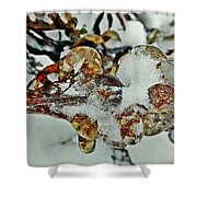 Flower Icicle. Shower Curtain