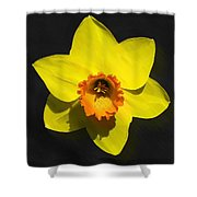 Flower - Id 16235-220251-6209 Shower Curtain