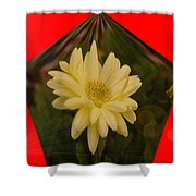 Flower In A Pentagon  Shower Curtain