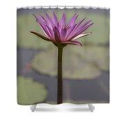Flower In A Pond Shower Curtain