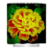Flower In Abstract With Black Background Shower Curtain