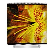 Flower In Abstraction Art Shower Curtain