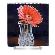 Flower In Crystal Vase Shower Curtain