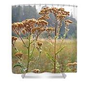 Flower In Focus Shower Curtain