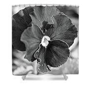 Flower In Garden Shower Curtain