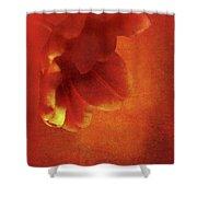 Flower In Red Shower Curtain