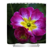 Flower In Spring Shower Curtain