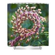 Flower In The Round Shower Curtain